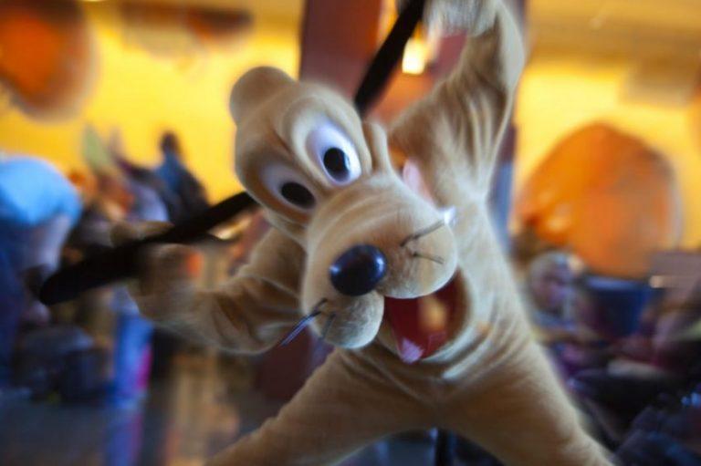 Disney's Hotel Santa Fe® 2* - 15% reducere si demipensiune gratuita (4 nopti)