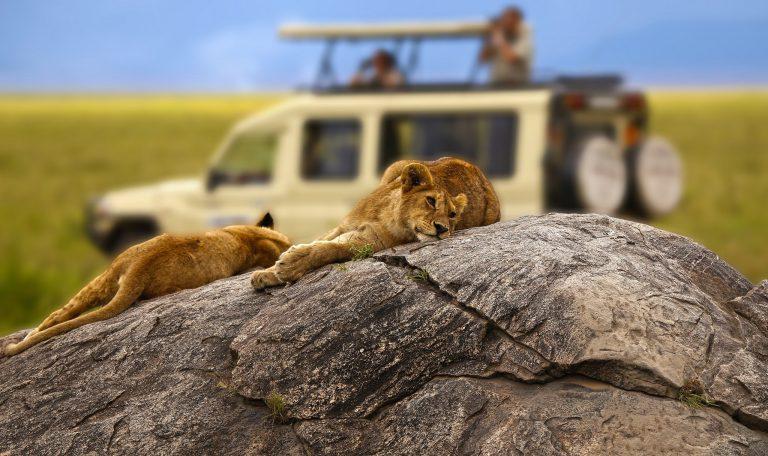Tanzania autentica - safari 8 zile