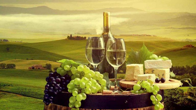 Degustare de vin si pranz in Toscana - plecare din Roma