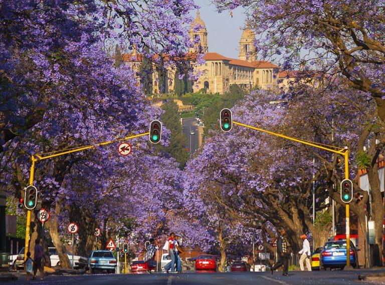 Spectaculoasa Africa de Sud - circuit 12 zile / 9 nopti