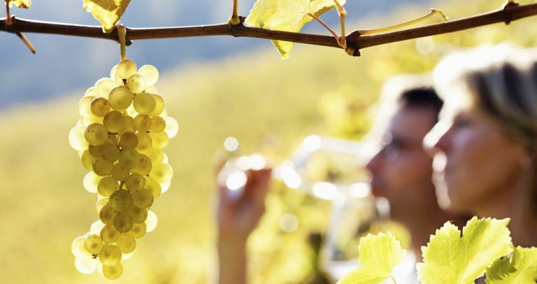 Valparaiso si Wine Tour - plecare din Santiago