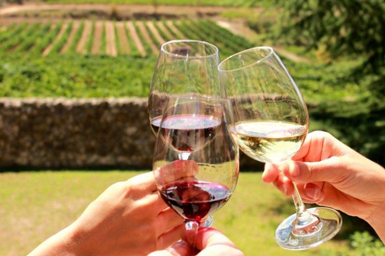 Degustare de vinuri Premium si Cava in regiunea Penedes - plecare din Barcelona