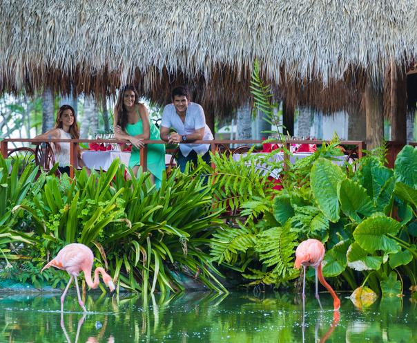 Early Booking Revelion 2019 Playa Bavaro - Natura Park Beach & Spa Eco Resort 4* (gratuitate ptr 1 copil)