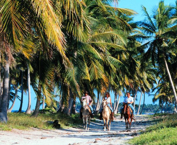 Early booking vara 2019 Playa Bavaro - Natura Park Beach & Spa Eco Resort 4*