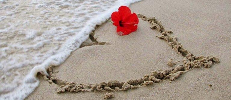 Valentine's Day 2019 in Punta Cana - Vista Sol Punta Cana Beach Resort & Spa 4*