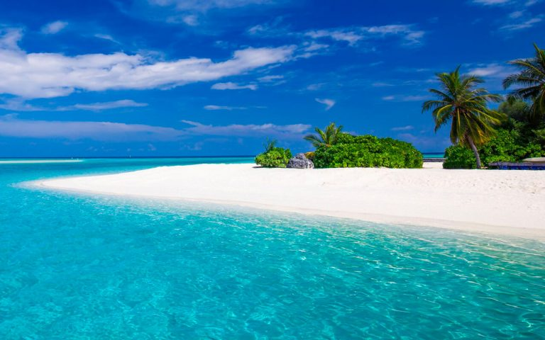 Early booking vara 2019 Zanzibar - Bravo Club Kiwengwa Hotel 4*