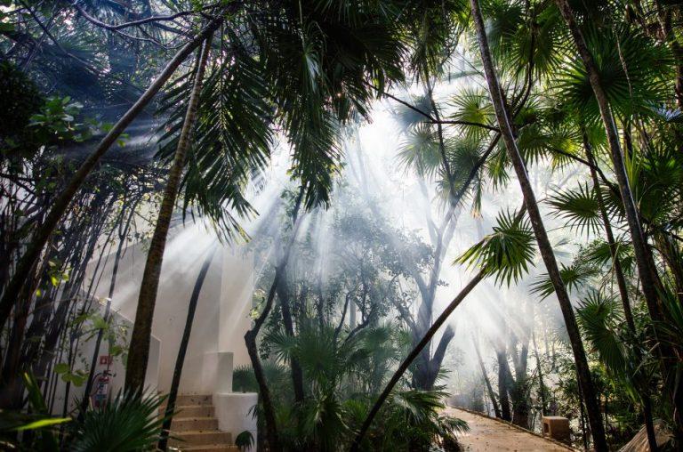 Esencia Resort 5*