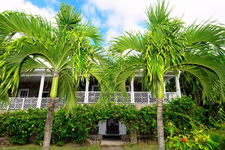 Montpelier Plantation & Beach 5*