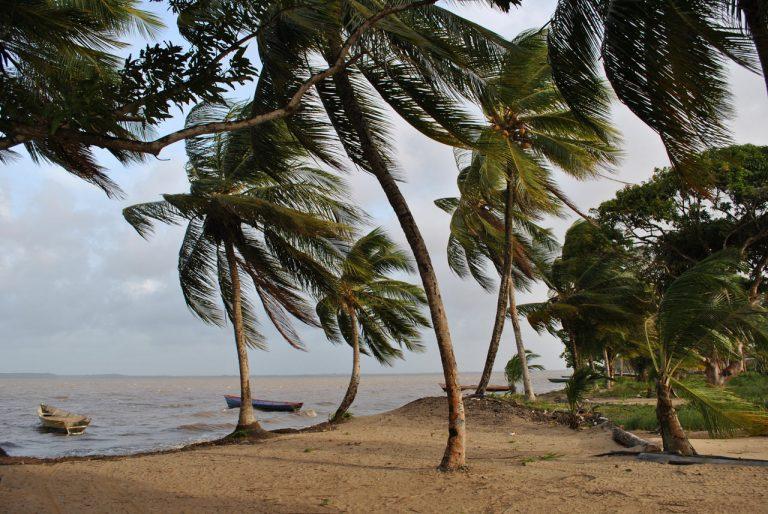 Explorati Guianele si ABC-ul Antilelor Olandeze! - circuit 17 zile
