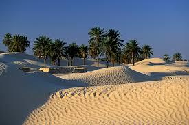 Vacanta Seniori in Tunisia