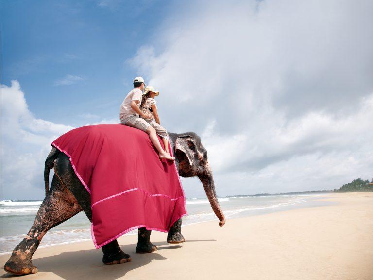 Taj Bentota Resort & Spa 5*