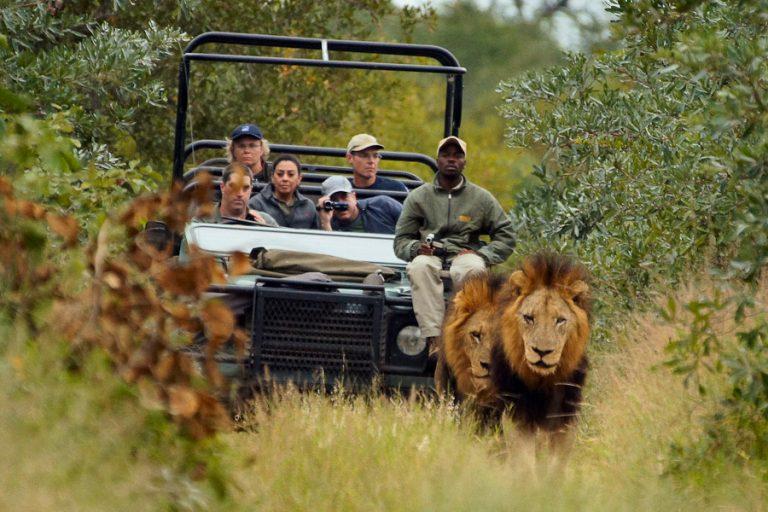 Share a Trip - Circuit si safari Africa de Sud, 9 zile