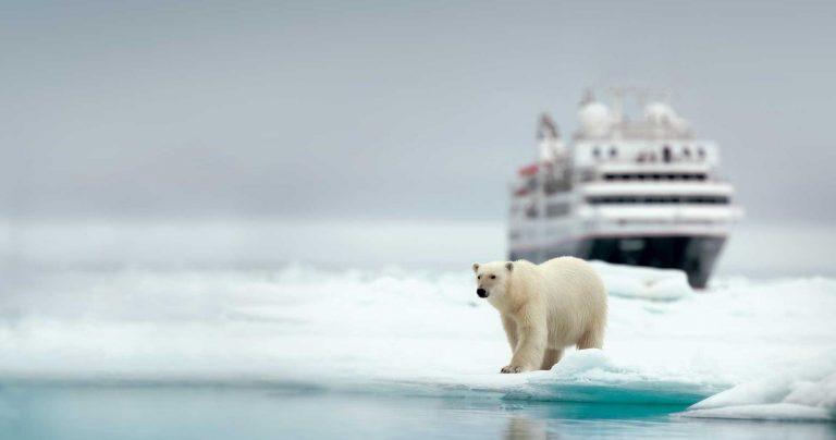 Croaziera in Antarctica, 19 zile