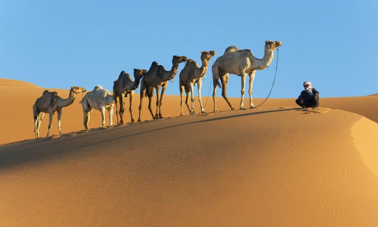 Oman, experienta Arabiei Veritabile - circuit 8 zile / 7 nopti